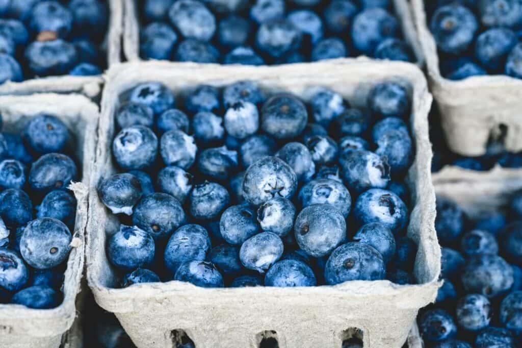 ¿Sabes cuáles son los mejores alimentos para estudiar oposiciones? Aquí te damos todas las claves y te descubrimos la mejor dieta para opositores